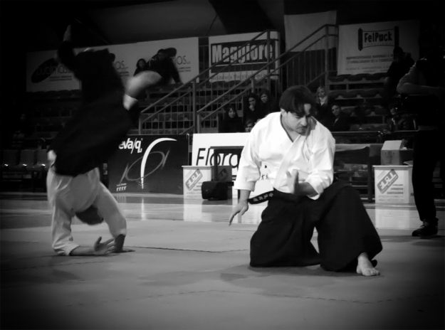 AIKIDO-MAZZILLI-SPECIAL_WX